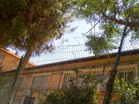 פנימית כפר סבא
